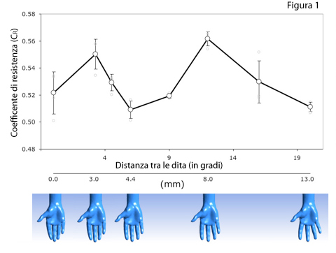 Aumento del coefficiente di resistenza in funzione della distanza tra le dita (nuoto)