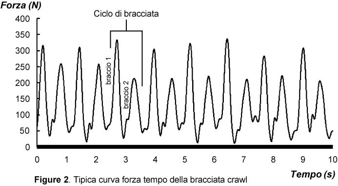 Curva tempo forza della bracciata crawl (stile libero)