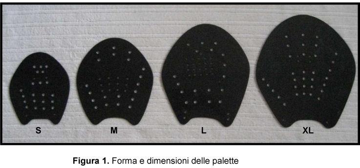 Forma e dimensione della paletta da allenamento utilizzata nello studio